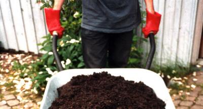 Wheelbarrow.of.compost